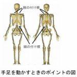 【10年後の常識!】手と足の付け根を変えれば歩行が若返る  第 372号