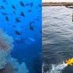 海洋環境保全をグローバルな視点で意識できる人達を増やしていく  第 797 号