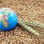 世界の穀物業界で実際に起こりつつあることを把握する  = 2-2 =  第1,602号